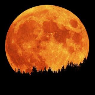 orange-moon-texas-ghostrider-dot-com