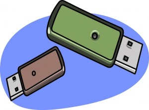 flash-thumb-drives-green-brown