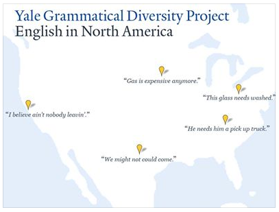 Yale Grammatical Diversity Project